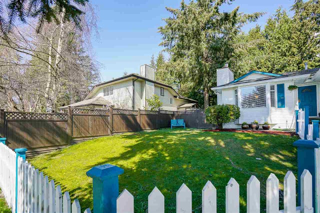 14319 68A AVENUE - East Newton House/Single Family for sale, 3 Bedrooms (R2153625) #20